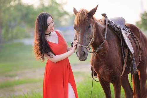 Приснилась лошадь толкование сна