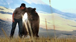 К чему снится медведь мужчине